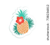 tropical sticker  fashion pin...   Shutterstock .eps vector #738236812