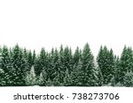 spruce tree forest covered by... | Shutterstock . vector #738273706