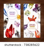 two vertical banners with... | Shutterstock .eps vector #738285622