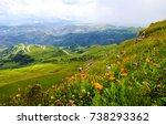 Stock photo mountain valley flowers landscape 738293362