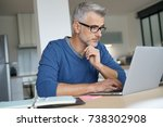 middle aged man working from... | Shutterstock . vector #738302908
