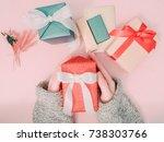 beauty girl's hand hold red... | Shutterstock . vector #738303766