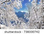 branches covered with snow in... | Shutterstock . vector #738330742