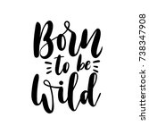 born to be wild motivational... | Shutterstock .eps vector #738347908
