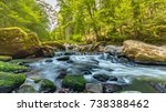 Forest River Flow Landscape ...