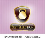gold shiny emblem with... | Shutterstock .eps vector #738392062