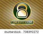 gold emblem with kettlebell... | Shutterstock .eps vector #738392272
