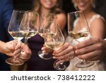 friends drinking white wine | Shutterstock . vector #738412222