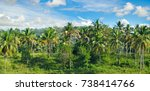 tropical palm trees and blue... | Shutterstock . vector #738414766