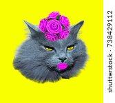 lady retro cat contemporary art ...   Shutterstock . vector #738429112