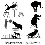 circus show | Shutterstock .eps vector #73843990