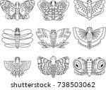 butterfly outline hand sketch... | Shutterstock .eps vector #738503062