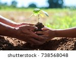 father and children help plant... | Shutterstock . vector #738568048
