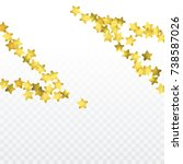star confetti isolated on... | Shutterstock .eps vector #738587026