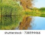 water reflection at danube delta | Shutterstock . vector #738594466