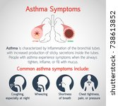 asthma symptoms vector logo... | Shutterstock .eps vector #738613852
