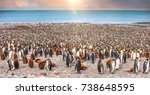 wide view of large colony of... | Shutterstock . vector #738648595