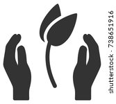 sprout care hands vector...   Shutterstock .eps vector #738651916
