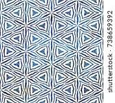 native batik watercolor... | Shutterstock . vector #738659392