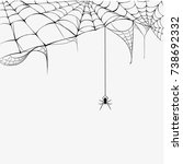 black spider and torn web... | Shutterstock .eps vector #738692332
