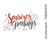 season s greetings handwriting... | Shutterstock .eps vector #738696355