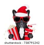 french bulldog dog ready to... | Shutterstock . vector #738791242