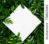 white paper placed on the green ... | Shutterstock . vector #738825682