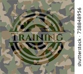 training on camouflaged pattern | Shutterstock .eps vector #738848956