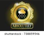 golden emblem with rain icon... | Shutterstock .eps vector #738859546