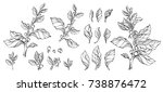 collection of hand drawn mate... | Shutterstock . vector #738876472