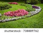 beautiful view of flowerbed in... | Shutterstock . vector #738889762