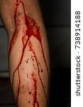 horror scene of a young woman... | Shutterstock . vector #738914188
