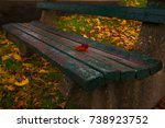A Single Red Maple Leaf Sits O...