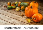autumn nature concept. fall... | Shutterstock . vector #738936802