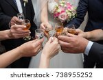 close up of people clinking... | Shutterstock . vector #738955252