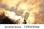 forest in the sun in the clouds. | Shutterstock . vector #739045066