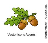 icon of acorns. vector... | Shutterstock .eps vector #739055806