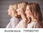 side view of beautiful women... | Shutterstock . vector #739083745