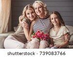beautiful women generation ... | Shutterstock . vector #739083766
