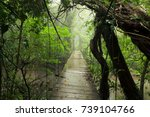 old suspension bridge in... | Shutterstock . vector #739104766