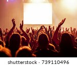 put your hands up in the air  | Shutterstock . vector #739110496