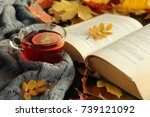 autumn  fall  leaves  cup of... | Shutterstock . vector #739121092