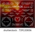 vector ethnic calligraphic... | Shutterstock .eps vector #739133836