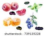 plum  honey  blueberry  mint... | Shutterstock . vector #739135228