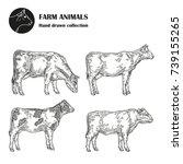 Hand Drawn Milk Cow Set...