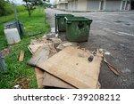 telipok  kota kinabalu ... | Shutterstock . vector #739208212