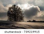 winter on the swabian alb | Shutterstock . vector #739219915