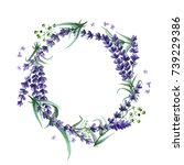 wildflower lavender flower...   Shutterstock . vector #739229386