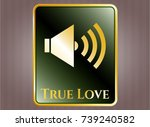 shiny emblem with sound icon... | Shutterstock .eps vector #739240582