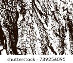 tree bark texture | Shutterstock .eps vector #739256095